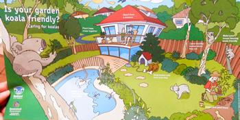 自宅の庭でコアラと共存するため、イラストでわかりやすく書かれたパンフレット